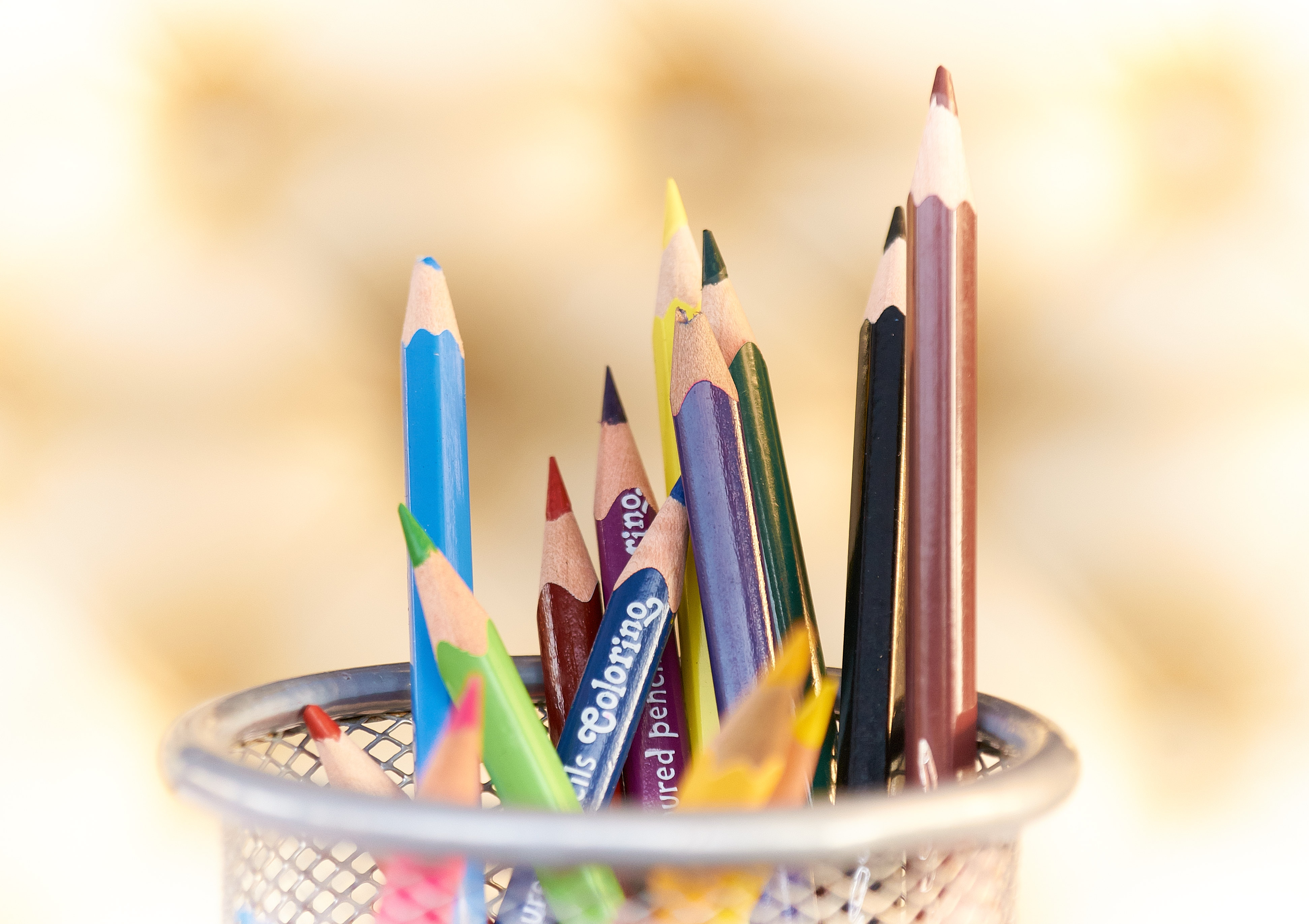 colored pencils in holder
